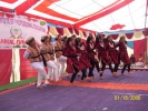 college annual function_5